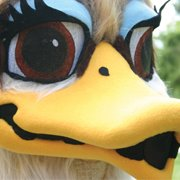 the world-famous Susie the Duck