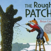 Book cover of The Rough Patch by Brian Lies