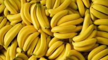 bunched of bananas